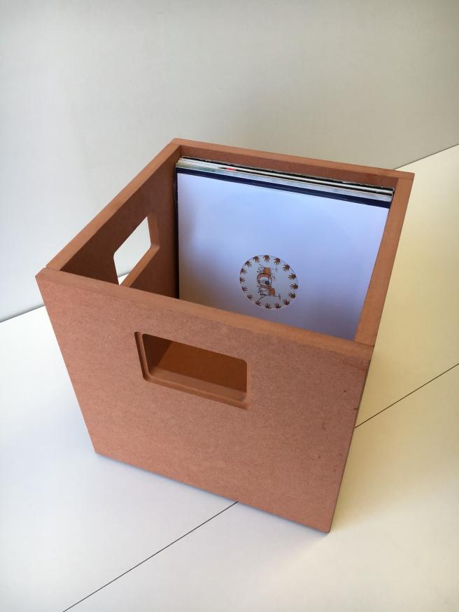 12 inch vinyl storage box
